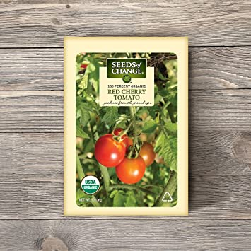 Tomato Cherry Organic Details about  /mini Cherry tomato in Flower Pot Top Quality Seeds