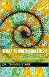 What Is Mathematics?: The Greatest Detective Story Never Told (The Truth Series Book 17)