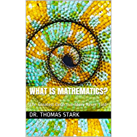 What Is Mathematics?: The Greatest Detective Story Never Told (The Truth Series Book 17) (English Edition)