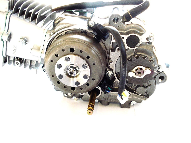 HMParts ATV / Quad / Dirt Bike / Pit Bike / Monkey Motor SET - Dirt ...