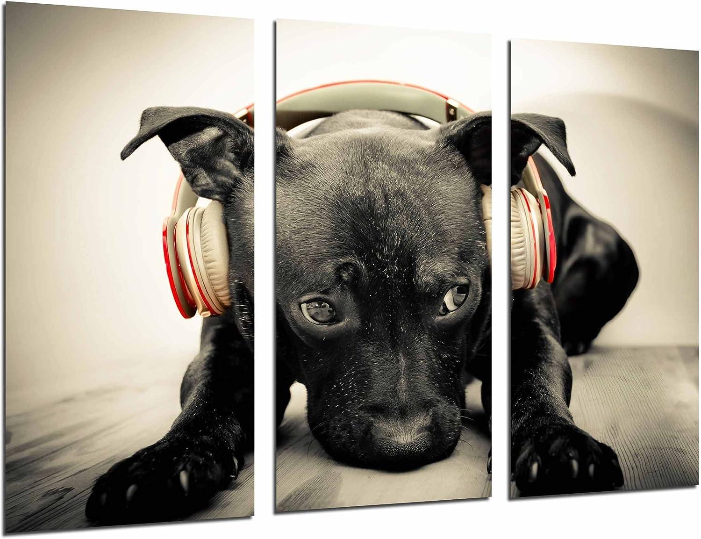 Poster Fotográfico Hipster Animal Perro Con Cascos Rojos, Color Sepia Tamaño total: 97 x 62 cm XXL