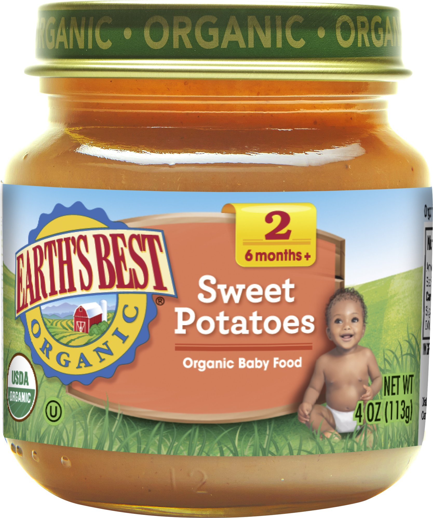 Earth's Best Organic Stage 2, Sweet Potatoes, 4 Ounce Jar (Pack of 12)
