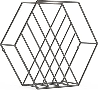 Umbra Zina Magazine Rack & Record Holder, Perfect for Vinyl Record Storage, Stands or Mounts to Wall, Titanium
