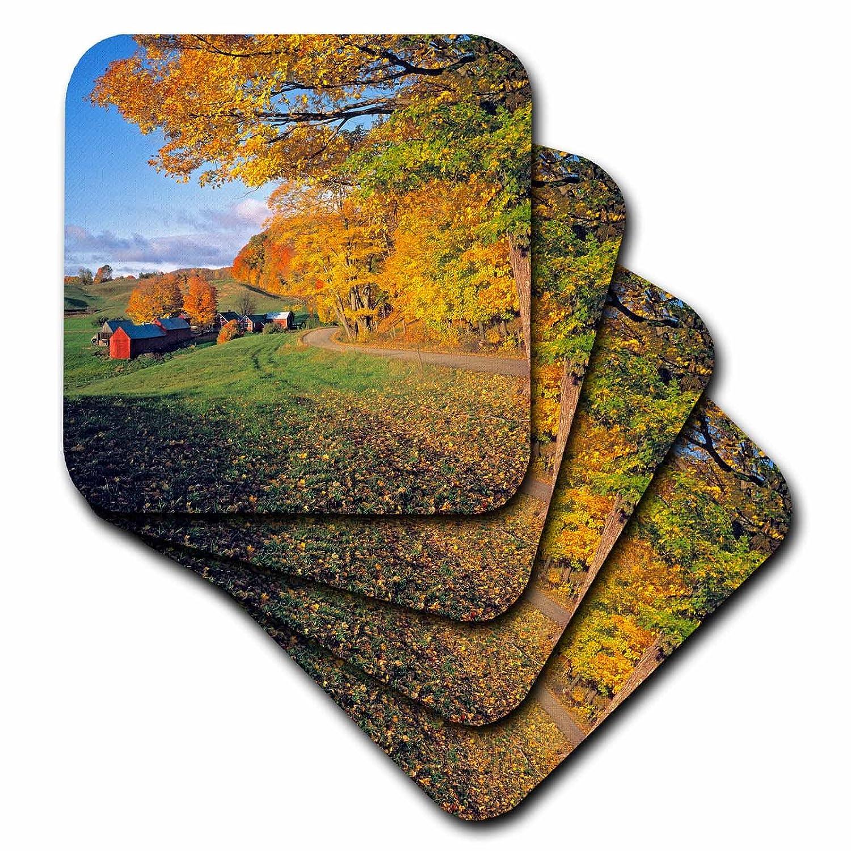 Autumn-US46 RER0004-Ric Ergenbright-Ceramic Tile Coasters Vermont 3dRose cst/_95043/_3 USA Set of 4 Jenne Farm