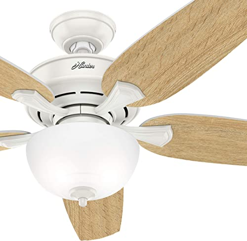 Hunter Fan 54 inch Casual Fresh White Indoor Ceiling Fan