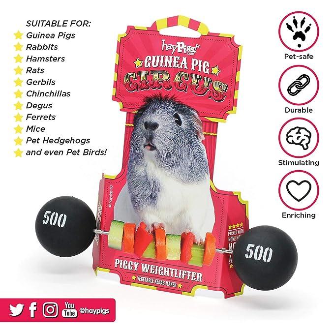 HAYPIGS Piggy Weightlifter - Palito para brocheta de Verduras ...