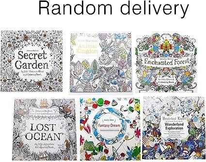 Libro de colorear de Graffiti para el jardín secreto de la escuela creativa, libro para aliviar el estrés, libro de pintura: Amazon.es: Oficina y papelería