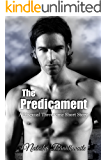 The Predicament: A Bisexual Threesome Short Story (The Proposition Book 2)