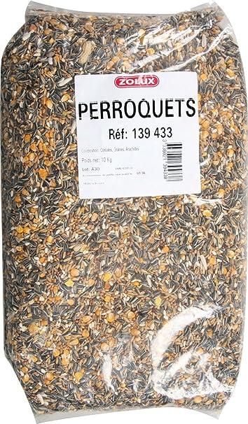 Graines perroquet