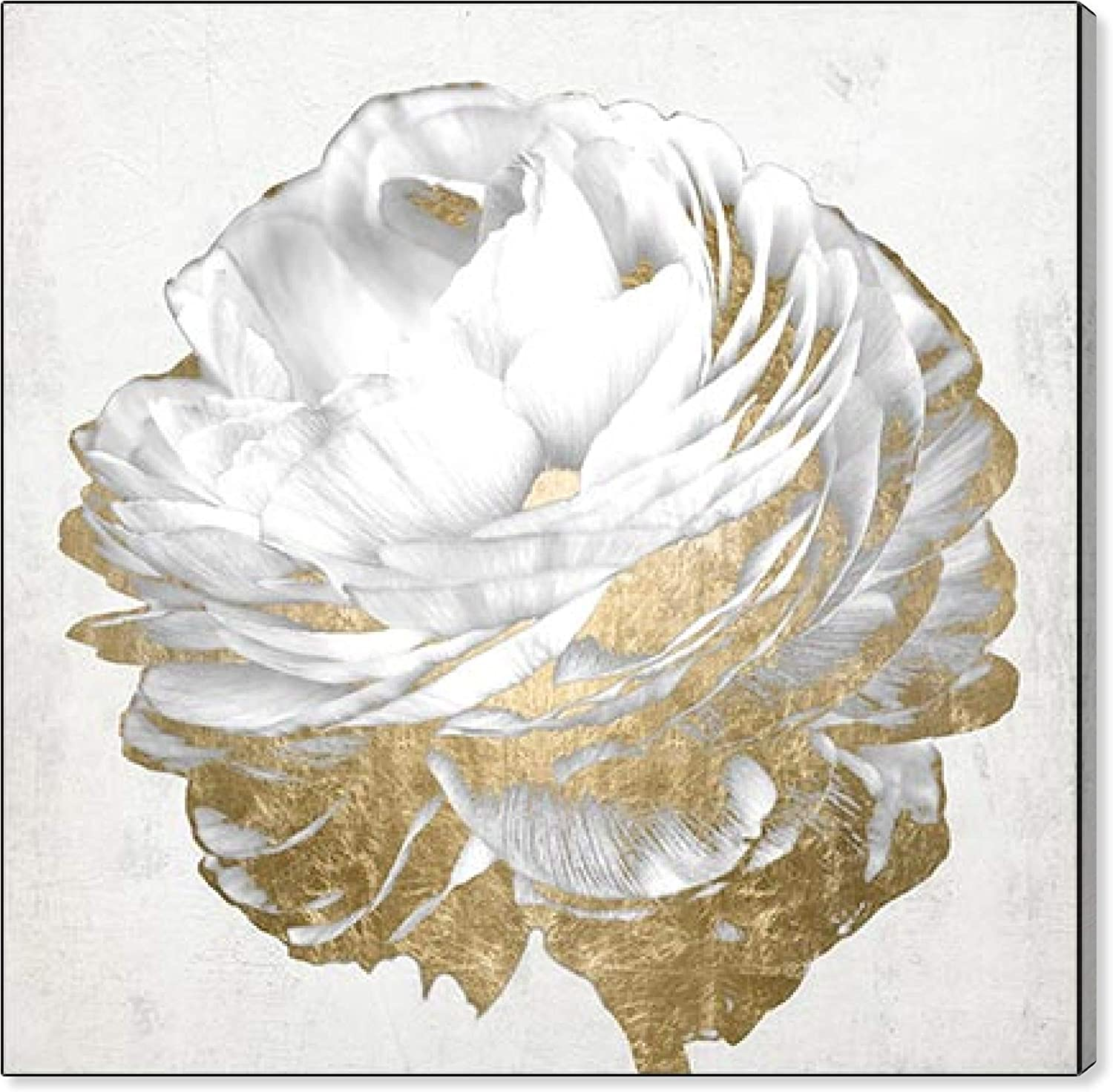 The Oliver Gal Artist Co. Gold and Light White   Modern Premium Canvas Print The Floral and Botanical Wall Art Decor Collection, 30