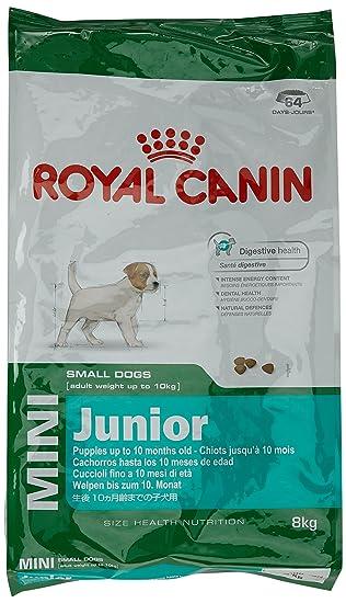 royal canin dog images galleries with. Black Bedroom Furniture Sets. Home Design Ideas