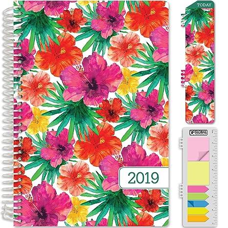 HARDCOVER Calendario Año 2019 Planificador: (Noviembre 2018 ...