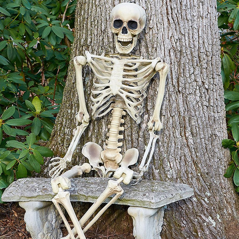 Halloween Skeleton.5 4ft Halloween Skeleton Life Size Realistic Posable Full Body Hanging Adult Human Skeletons Skull Scientific Bones Models With Movable Poseable