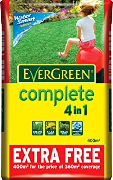 Scotts Miracle-Gro Lawns Feed and moss killer EverGreen - Best Nutrient-Packed Moss Killer