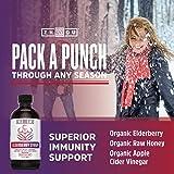 Zhou Nutrition Elderberry Syrup - Organic Sambus
