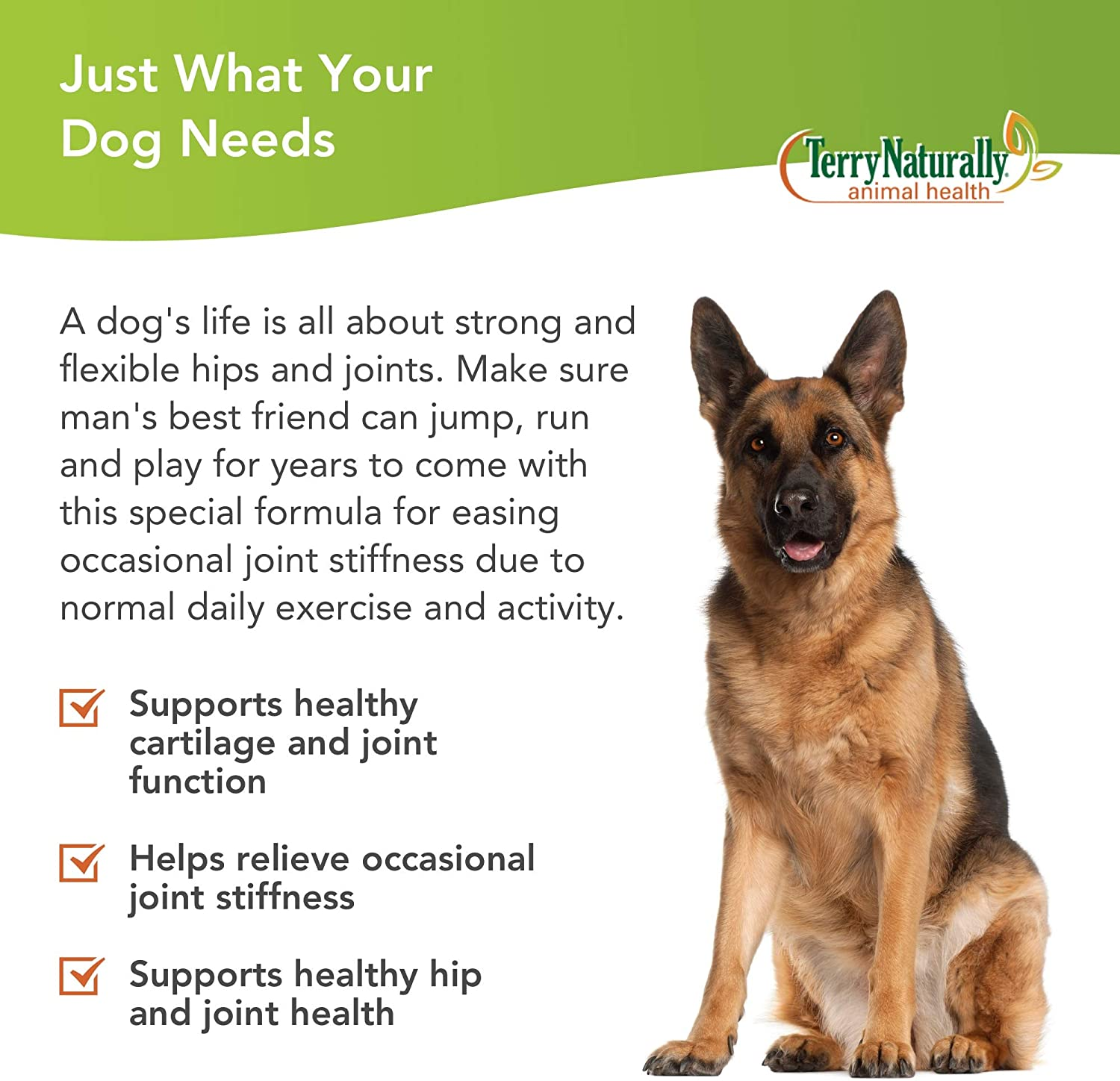 Terry Naturally Animal Health Joint & Hip Formula - 60 Chewable Wafers - Joint Health & Flexibility Support Supplement for Dogs, Promotes Comfort & Mobility - for Canines Only - 60 Servings