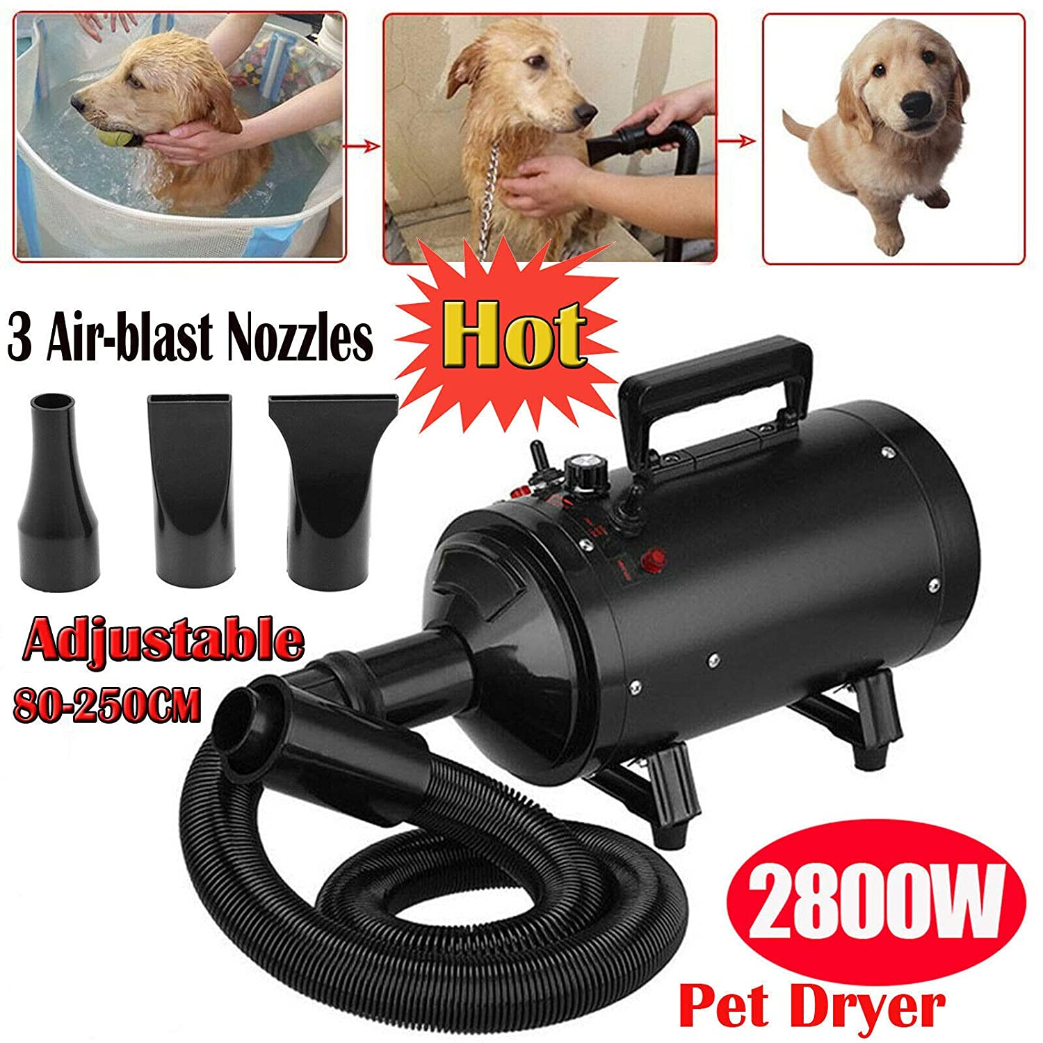 Black (stepless wind speed) 2800W Pet Grooming Hair Dryer High Velocity Dog Cat Hairdryers Low Noise Dryer Blaster Professional Powerful 2.5M Flexible Hose with 3 Nozzles Stepless Wind Speed Black
