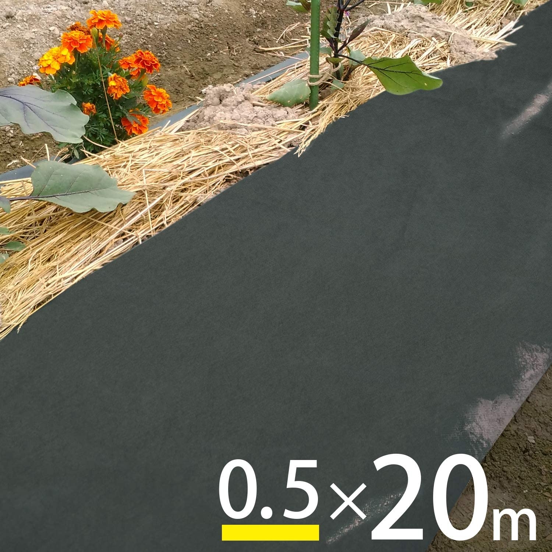 アストロ 防草シート 0.5×20m グリーン