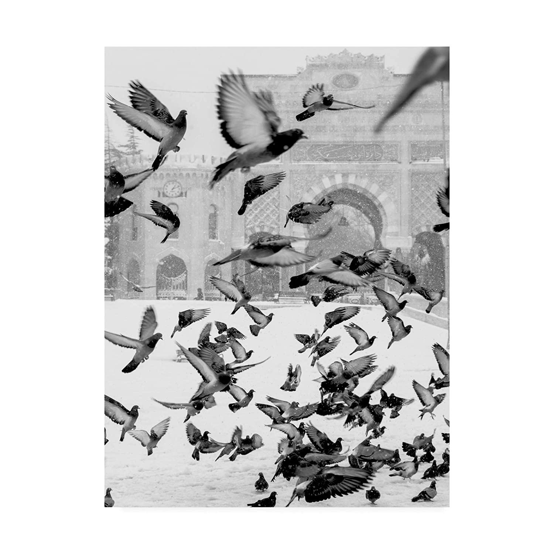 14x19 Trademark Fine Art IC01282C1419GG Moscow Design Fabrikken, 14x19, Multiple