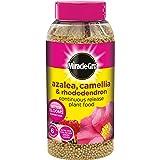 Miracle-Gro - Bote de abono en granos para azaleas, camelias y rododendros (1 kg, fórmula de liberación lenta)