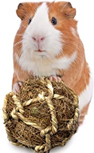 SunGrow Guinea Pig Coco Fiber Toy, 3 Inches, Teeth Floss Ball, Improves Dental Health, Chew Toy Provides Stimulation, Play Catch, Tug of War, Fetch, Stress Reliever, Ideal for Pocket Pet, 1 Piece