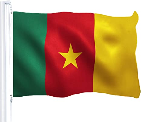 CAMEROON 5ft x 3ft   Flag with brass eyelets   SALE
