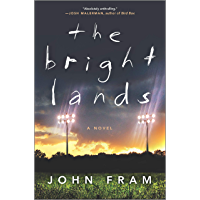 The Bright Lands: A Novel book cover