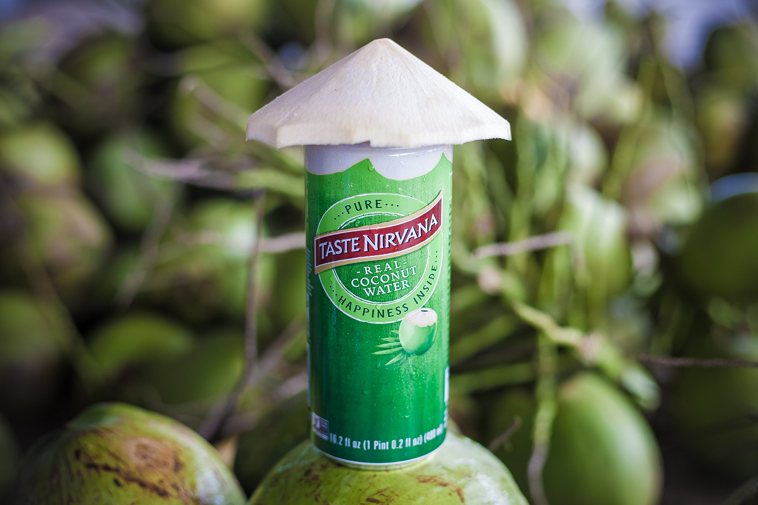 Taste Nirvana Real Coconut Water, Premium Coconut Water, 16.2 Ounce Cans (Pack of 12) by Taste Nirvana (Image #6)