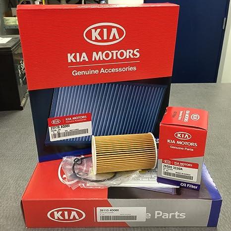 Amazon.com: 2011-2014 Kia Sedona Service Kit (104MM LENGTH OIL ...