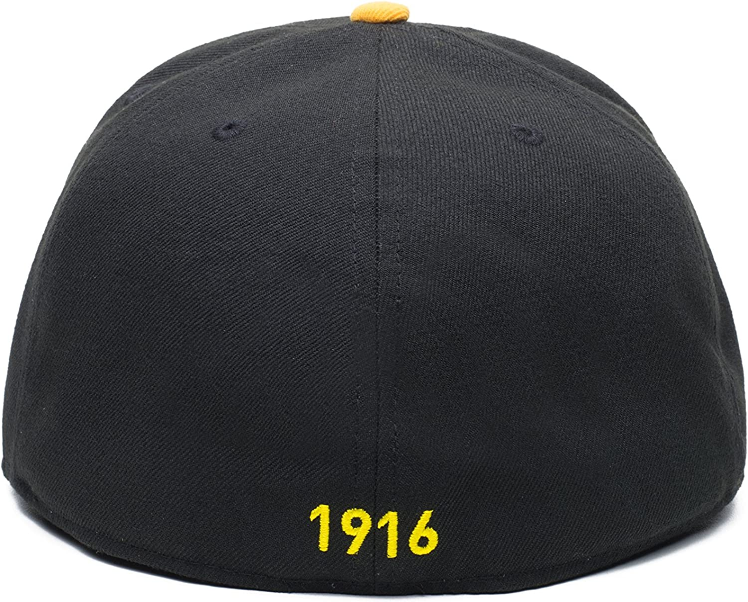 Fi Collection Dawn Fitted Hat