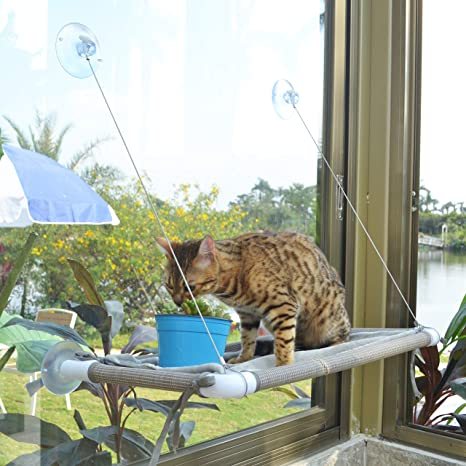 Amazon.com: Percha para ventana de gato, hamaca para gato ...