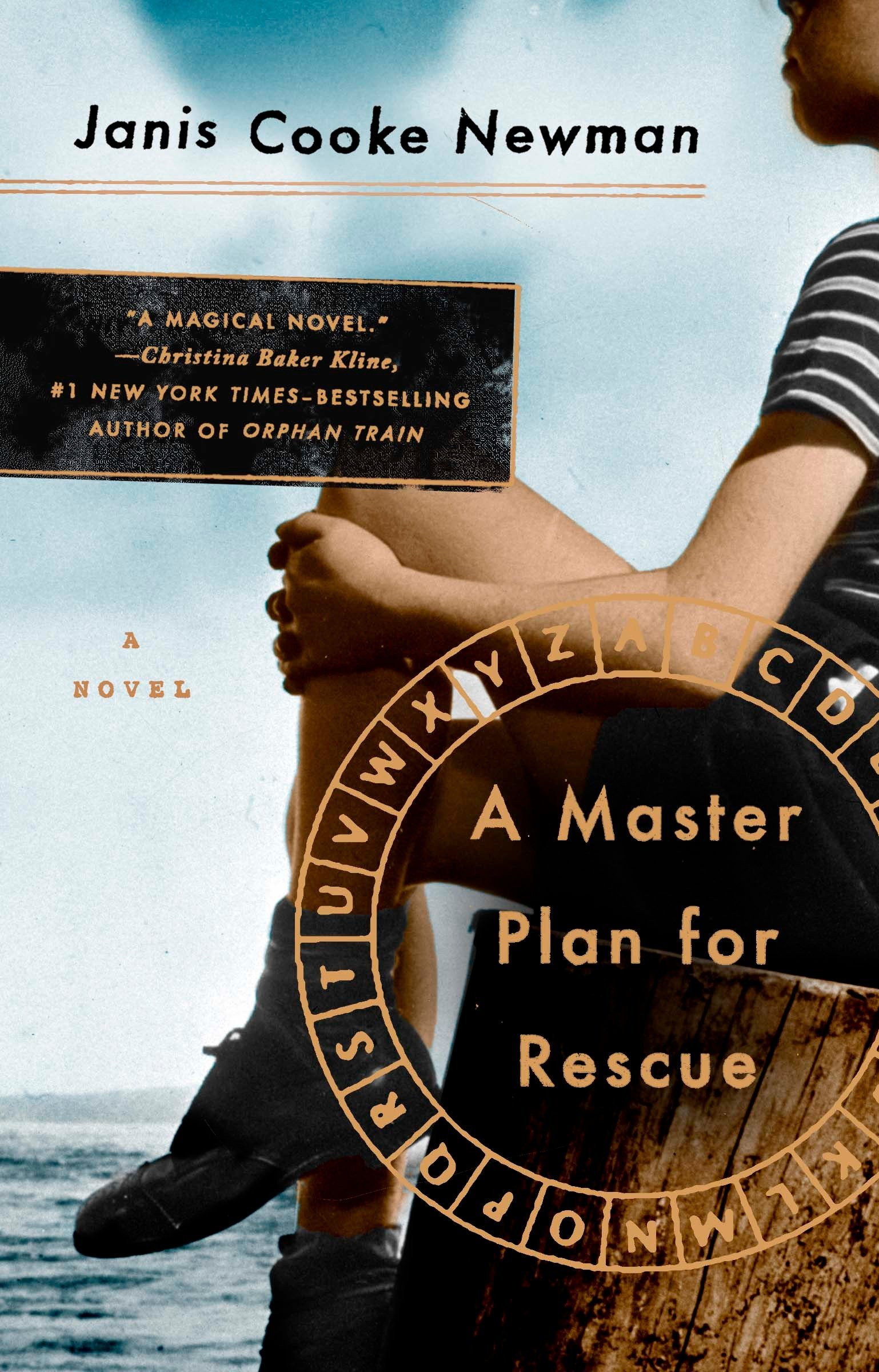 Read Online A Master Plan for Rescue: A Novel pdf