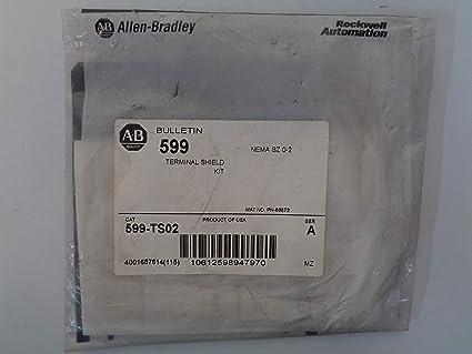 Allen Bradley via TCS 599TS02 Ser  A NSFP 599 TS02: Amazon com