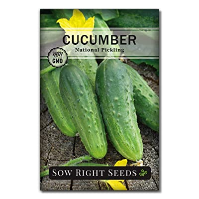 Sow Right Seeds - National Pickling Cucumber Seeds for Planting - Non-GMO Heirloom Seeds with Instructions to Plant and Grow a Home Vegetable Garden, Great Gardening Gift (1) : Garden & Outdoor