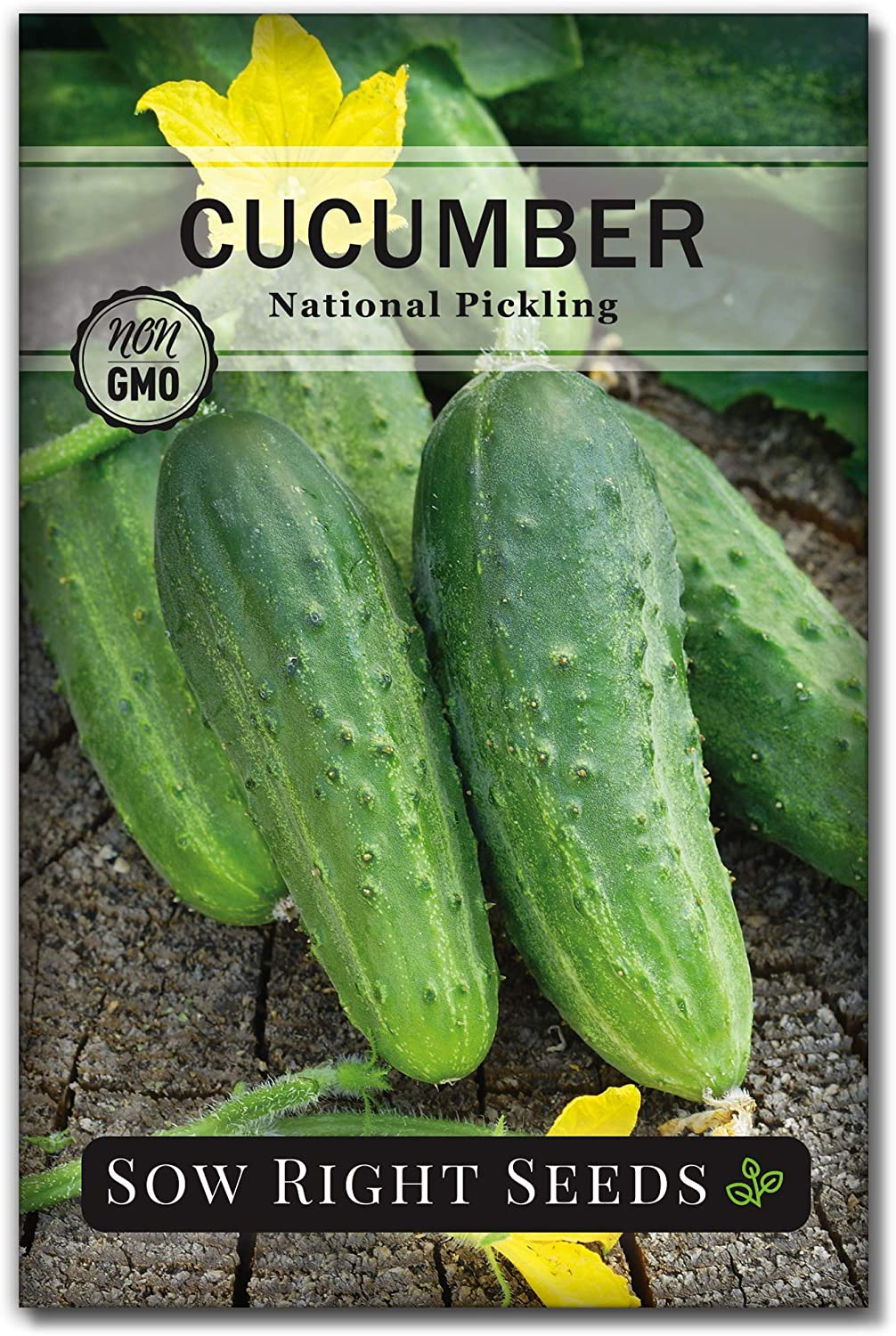 Sow Right Seeds - National Pickling Cucumber Seeds for Planting - Non-GMO Heirloom Seeds with Instructions to Plant and Grow a Home Vegetable Garden, Great Gardening Gift (1)
