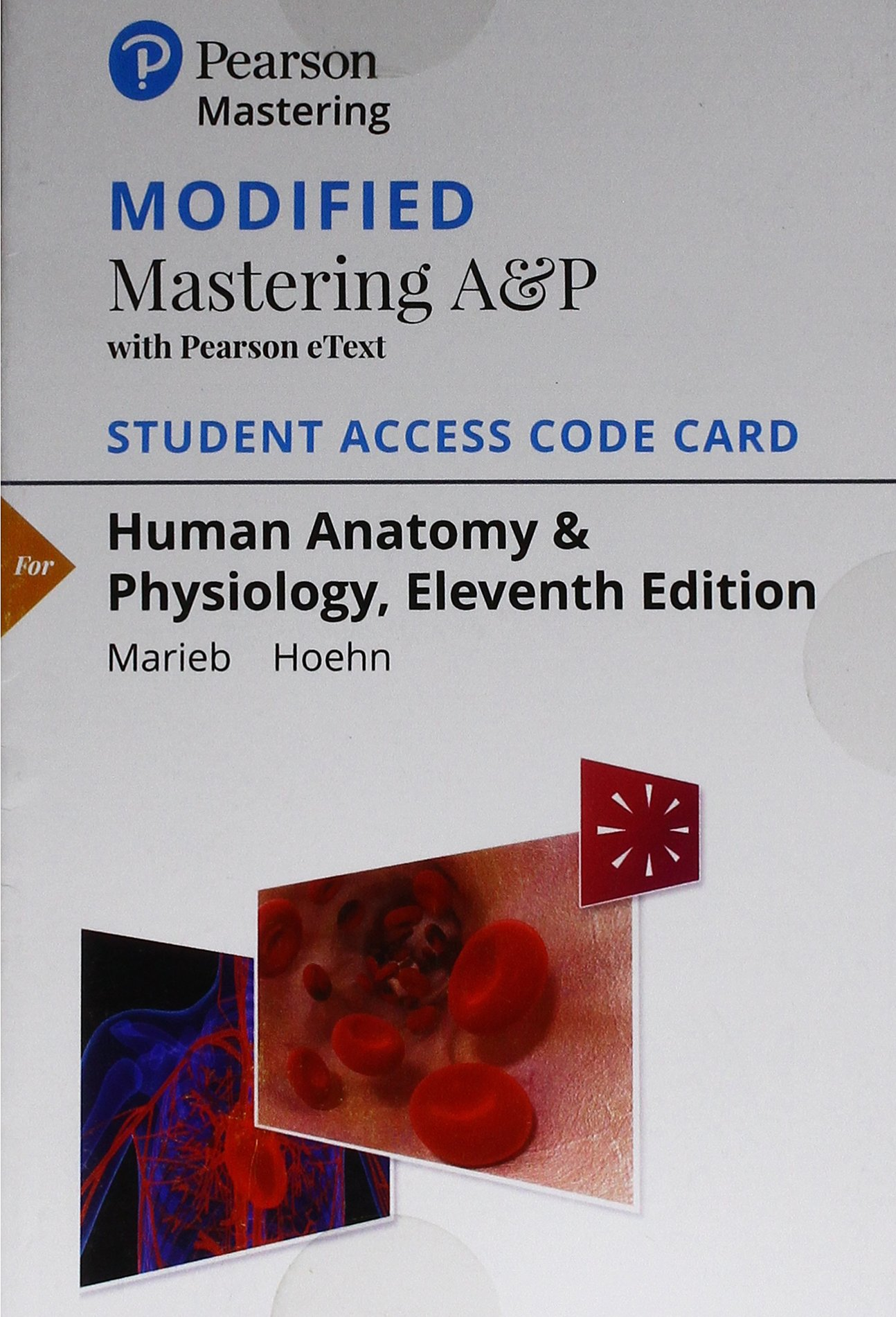 Human Anatomy & Physiology Modified Mastering A&P With Pearson Etext ...