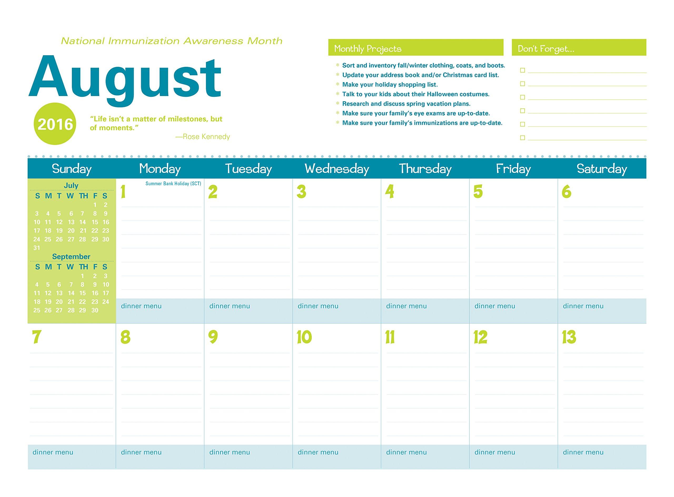 Buy Amy Knapp Big Grid 2017 Calendar: The Essential