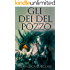 Gli Dei del Pozzo (Saga del Pozzo Vol. 1)