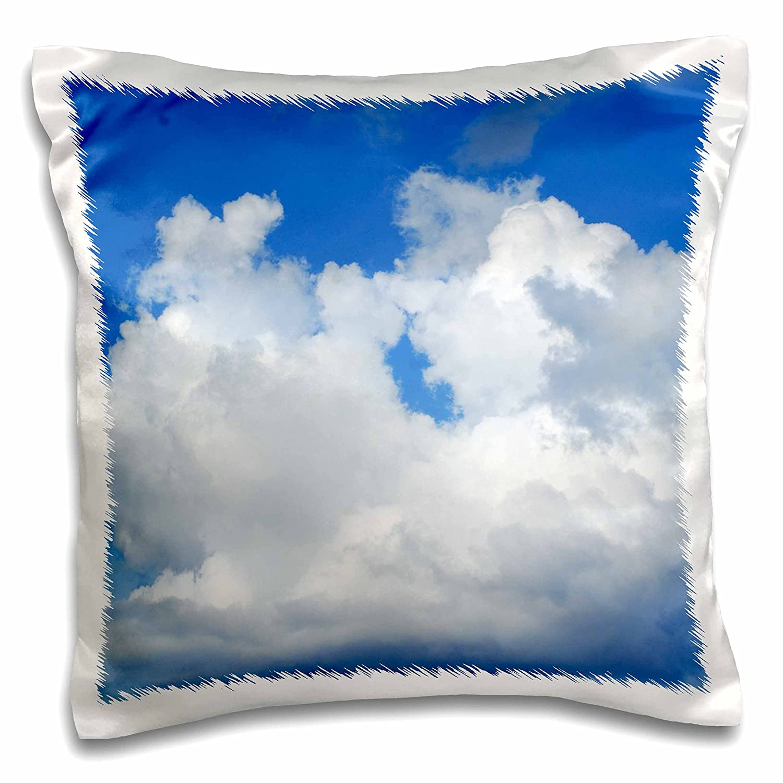 Amazon.com: 3dRose Florene Nubes – Pretty Blanco apestoso ...