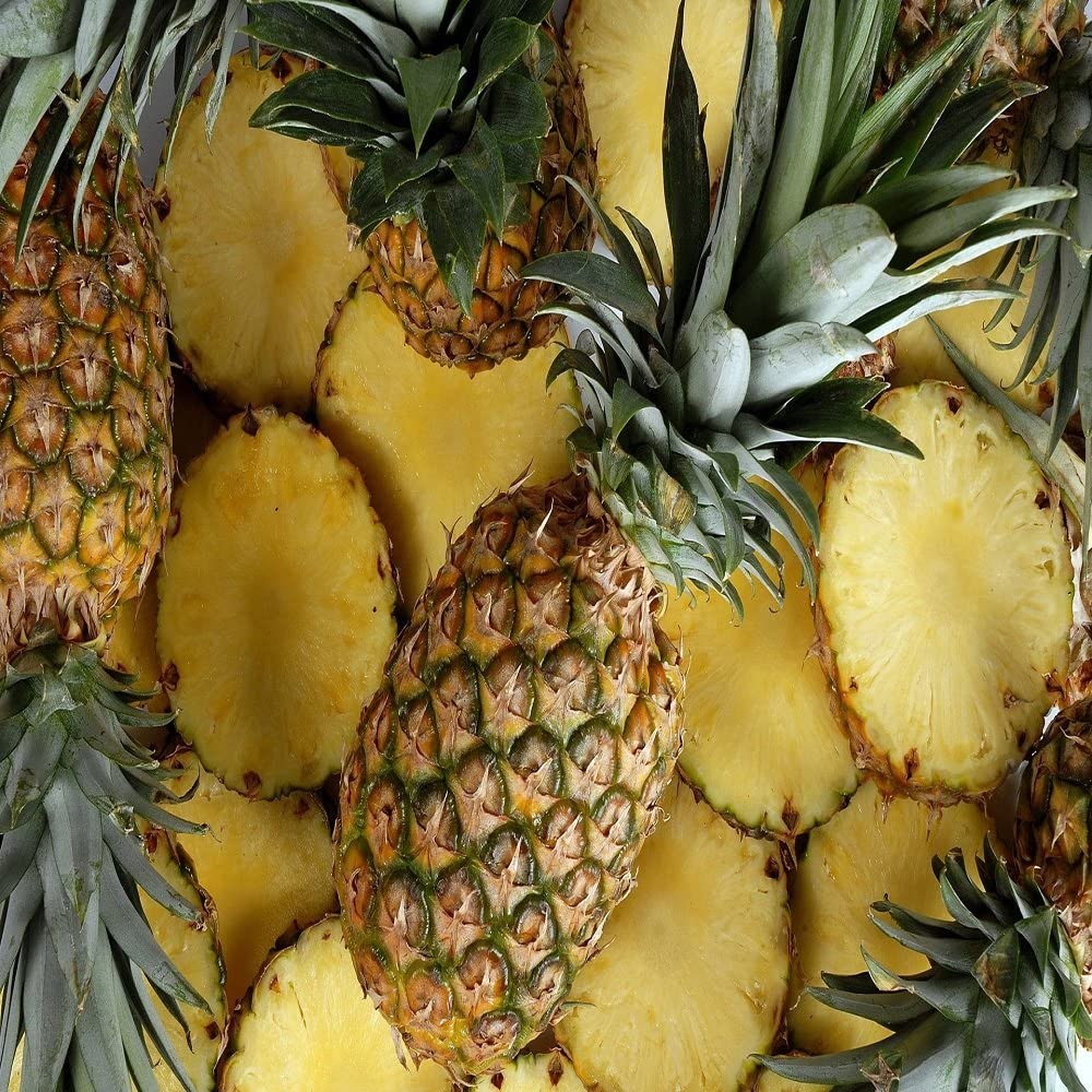 Pineapple Paradise Fragrance Oil - 16 OZ/1 LB - for Candle & SOAP Making by VIRGINIA CANDLE SUPPLY - Free S&H in USA