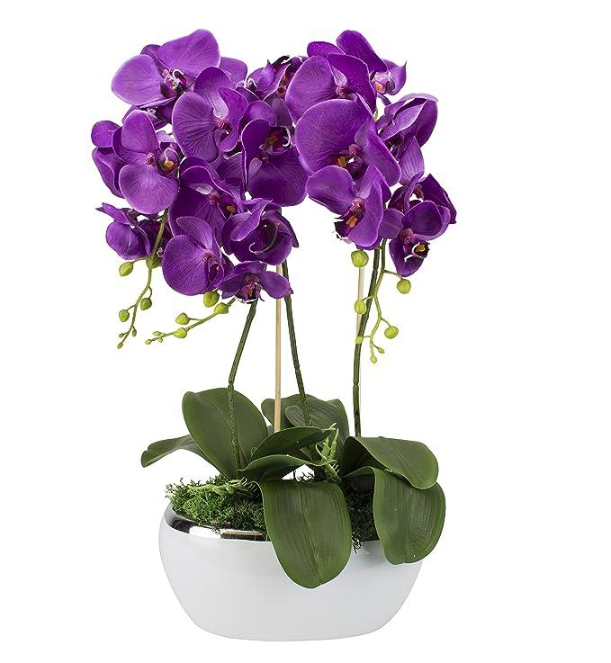 Künstliche Orchideen im Übertopf aus Keramik | Stoff Blüten | Farbe: Violett/Weiß/Grün | Gesamthöhe: ca. 65cm / Gesamtbreite: