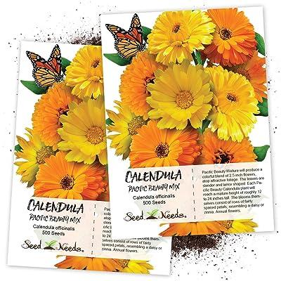 Seed Needs, Calendula Pacific Beauty Mix (Calendula officinalis) Twin Pack of 500 Seeds Each : Calendula Plants : Garden & Outdoor