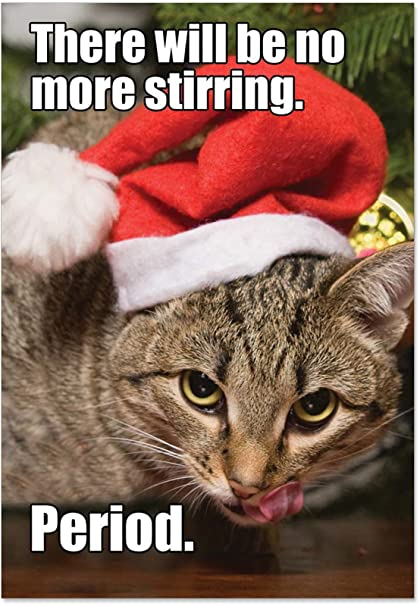 Boxed Cat Christmas Cards.12 No More Stirring Cat Boxed Christmas Cards With Envelopes 4 75 X 6 625 Inch Funny Cat Christmas Cards Cat Eats Mouse Holiday Note Cards
