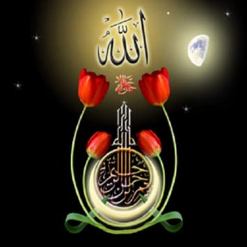Amazon com: Recitation of Quran in English: Appstore for Android