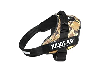 /Hungry Lapins JULIUS K-9 Zoomer/