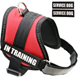 """Fairwin Dog Service Vest Harness for Service Dogs, Reflective Vest with """"IN TRAINING"""" Patches for Large Medium Small Dogs"""