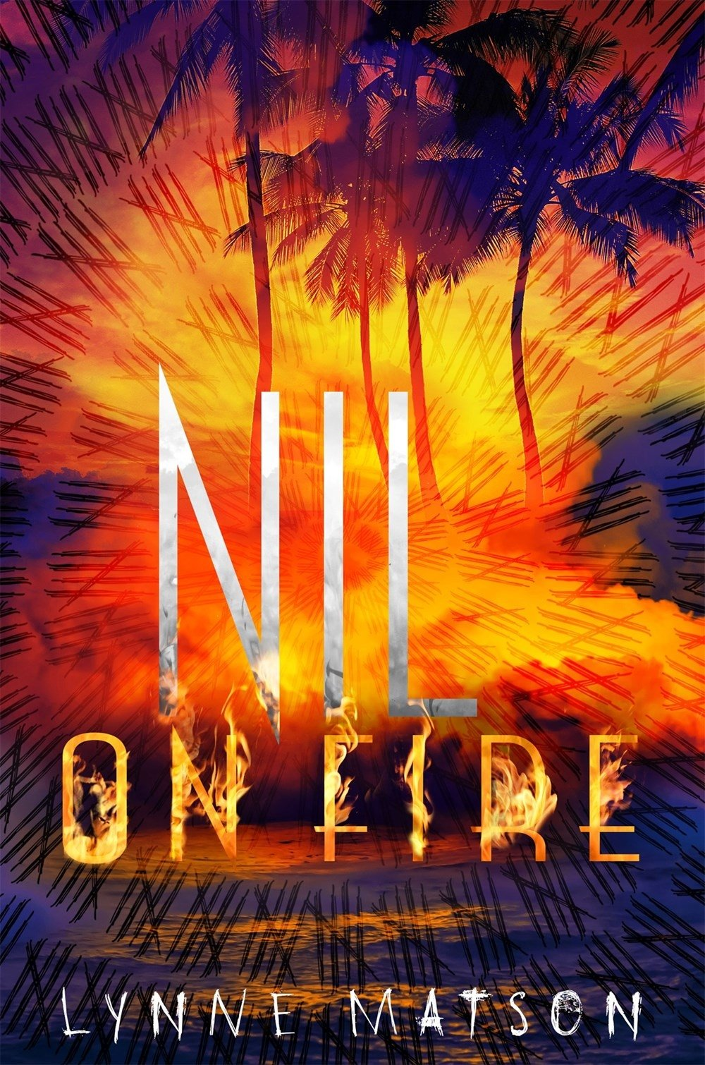 Nil on Fire (Anglais) Relié – 31 mai 2016 Lynne Matson Metropolitan Books 1627792953 Kinder- und Jugendbücher