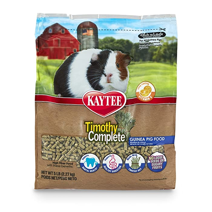 The Best Kaytee Fortified Guinea Pig Food