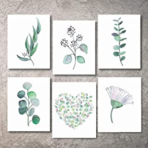 VARWANEO Botanical Plant Minimalist Wall Art Prints,Boho kitchen Art Eucalyptus Leaves,Nature Floral Plant Flower Green Prints Wall Art Vintage Print looking pictures Set of 6(8