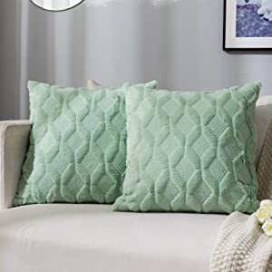 JUSPURBET Decorative Double Sided Plush 26x26 Throw Pillow Covers,Pack of 2 Luxury Soft Apple Green Pillowcase for Couch Sofa Bedroom